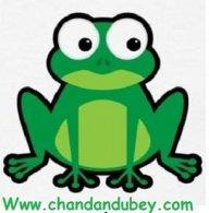 chandandubey